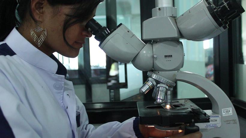 IDC Lab